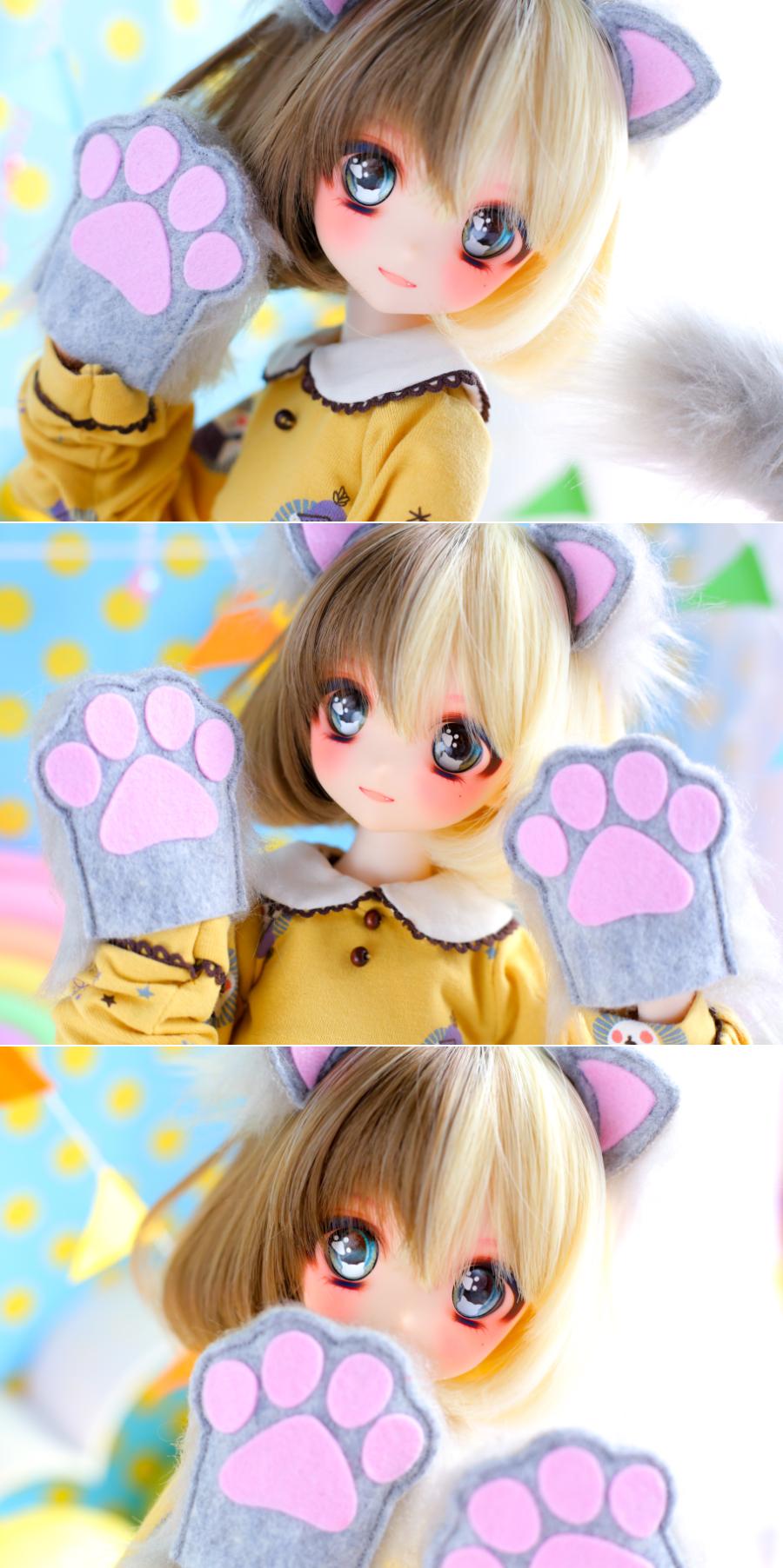 ヤフオク054DWC-01三毛猫ちゃんまとめ04