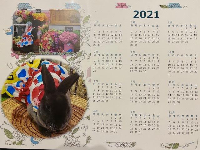 アイペット卓上カレンダー