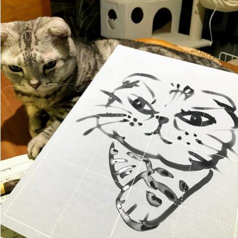 古澤さん家のネコちゃん
