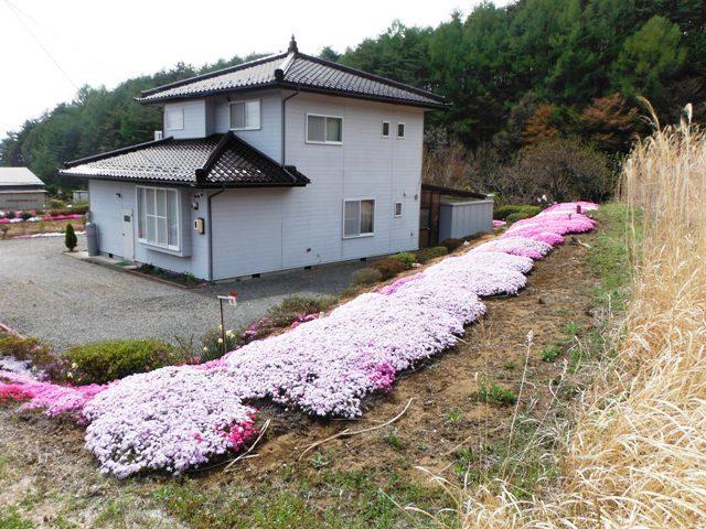 日輪寺畑砦 (21)