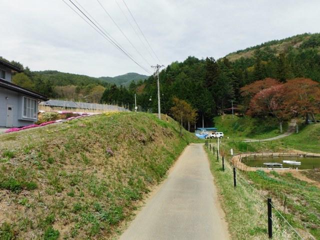日輪寺畑砦 (24)