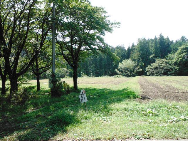 北の城・下の城(宮田村) (10)