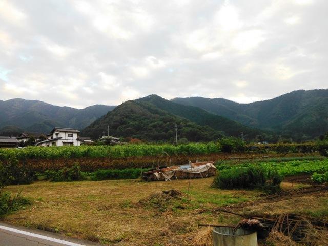 沼ノ入城(中野市) (57)