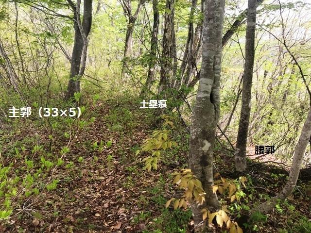 飯田城&秋葉山砦 (13)