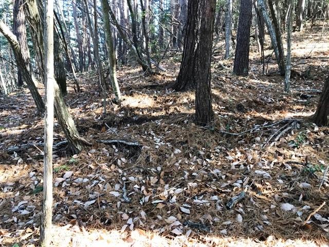硯龍山砦 (12)
