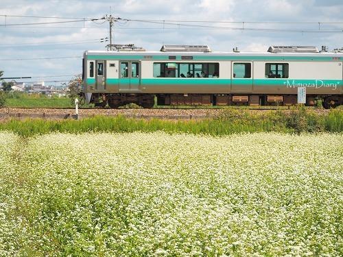 蕎麦と電車