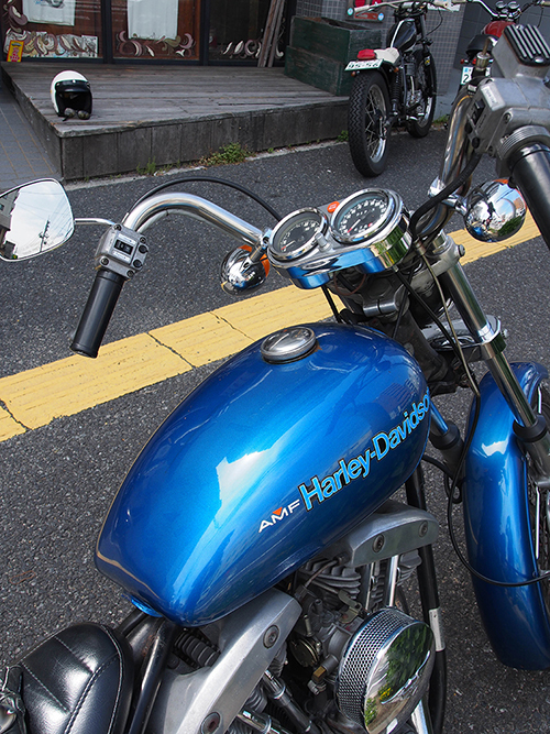 P5220068.jpg
