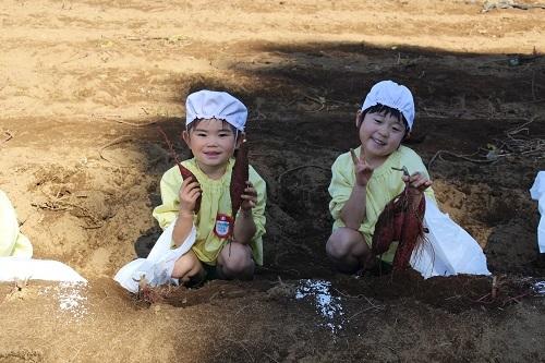 20201029 花組お芋掘り (28)