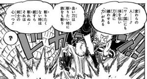 """ヒョウ五郎「刀身に纏わせる""""力""""」-ワンピース最新考察研究室.939"""