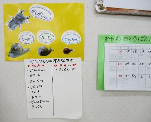 katatumuri2020_3.jpg