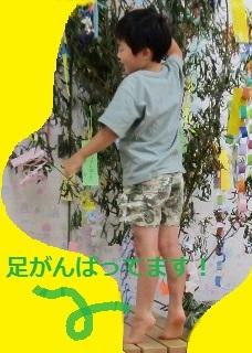 tanabatakazari2020_7.jpg