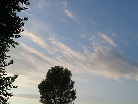 200805-3.jpg
