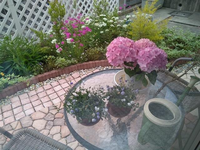 庭と紫陽花