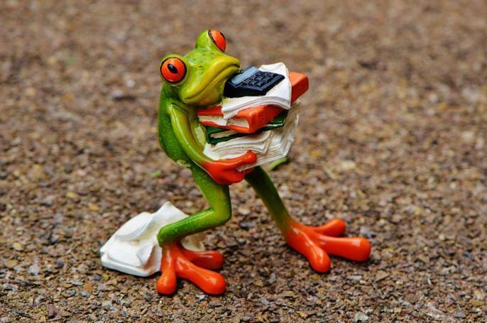 frog-1339892_960_720-093029021_convert_20201112002226.jpg