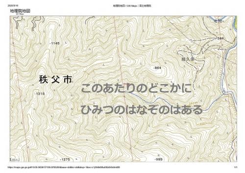 20200320大ドッケ_page-0001