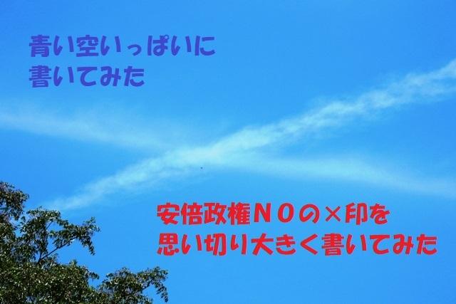 DSCN40331.jpg