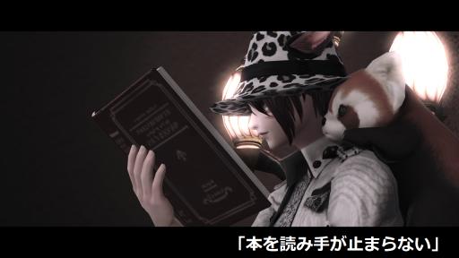 本を読む手が止まらない