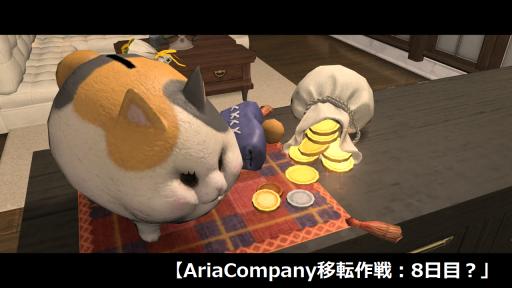 AriaCompany移転作戦:8日目?