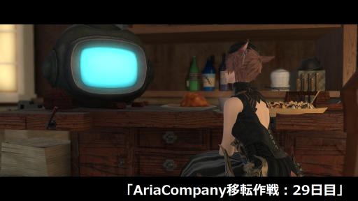 AriaCompany移転作戦:29日目