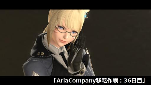 AriaCompany移転作戦:36日目