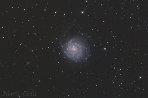M101 回転花火銀河(Pinwheel Galaxy)
