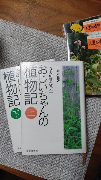 おじいちゃんの植物記20201119