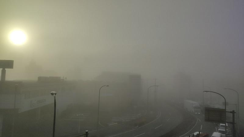 霧の朝20201126