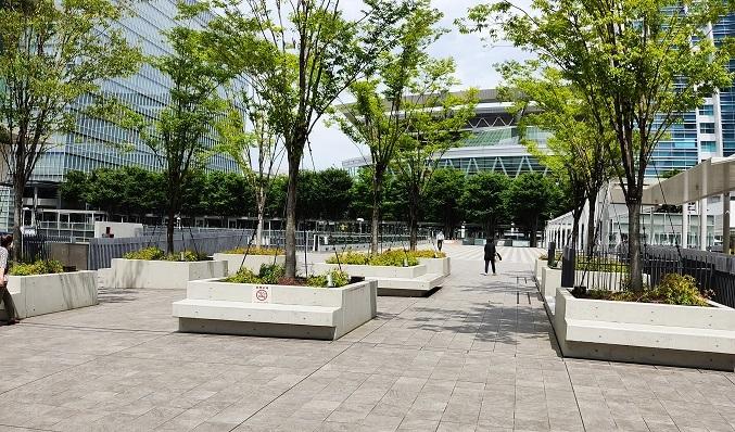 ケヤキ広場20200727