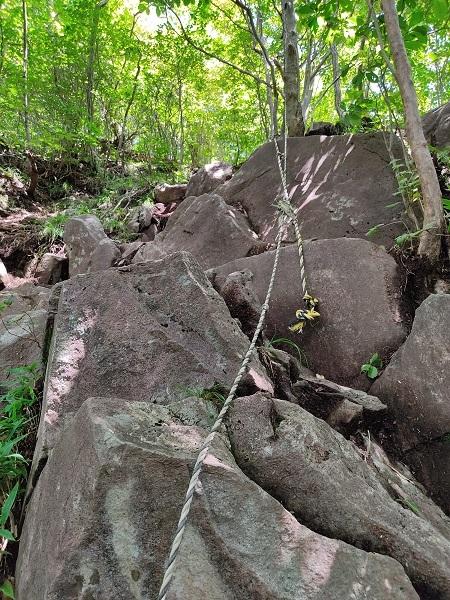 岩20200825