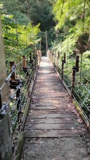 吊り橋20201016