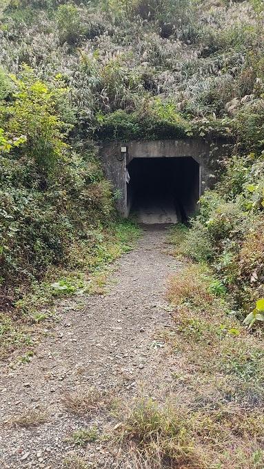 トンネル20201020