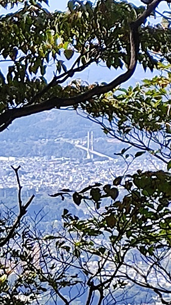 橋が見える20201020