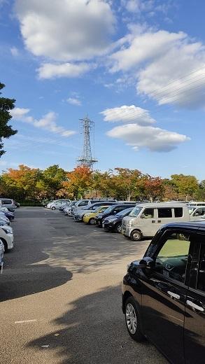 駐車場紅葉20201026