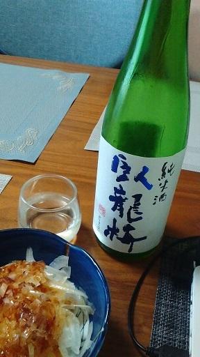 臥龍梅20200511