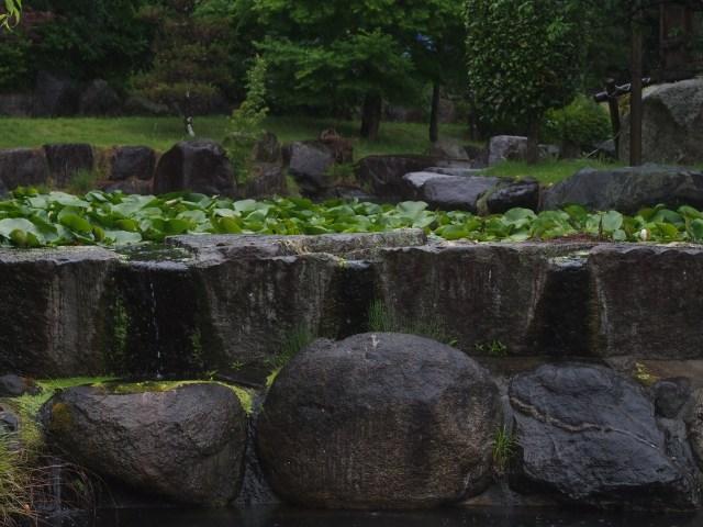 200611-65.jpg