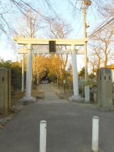 DSCN2247朝霞 氷川神社 1