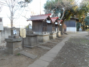 DSCN2253朝霞 氷川神社 5