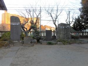 DSCN2254朝霞 氷川神社 6