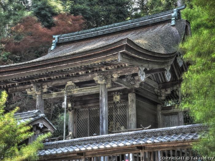 八坂神社本殿(儀俄大宮)