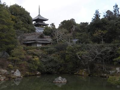 仁和寺御所庭園