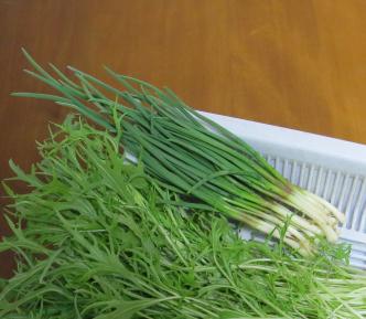 アサツキ収穫物