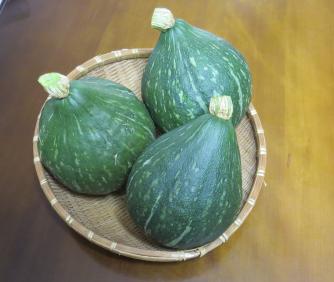 カボチャ(ロロン)収穫物10月