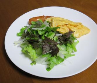 コーラルリーフのサラダ利用1