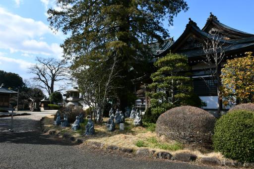 202300310・ニコン狭山湖1-06・全徳寺到着