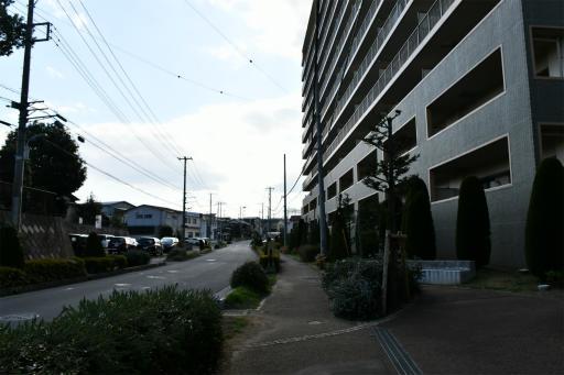 202300310・ニコン狭山湖1-04