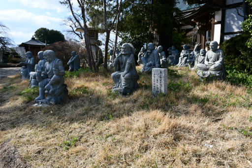 202300310・ニコン狭山湖1-07