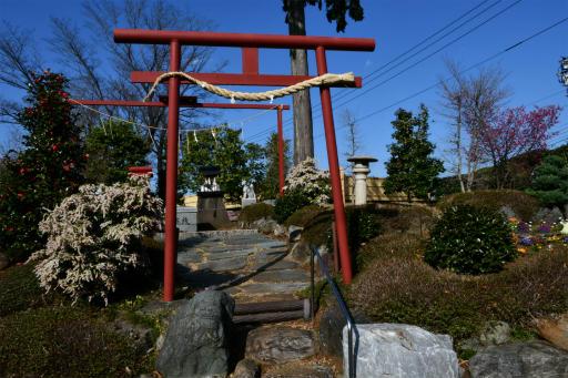 202300310・ニコン狭山湖1-18