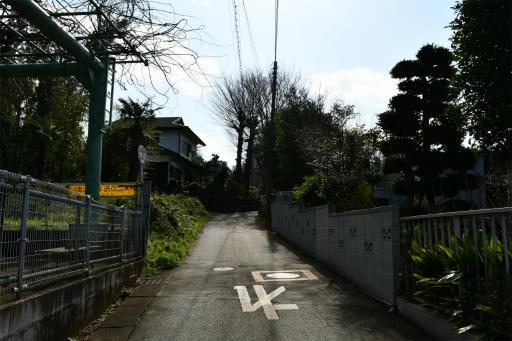 202300310・ニコン狭山湖1-17