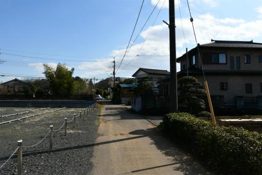 202300310・ニコン狭山湖1-13
