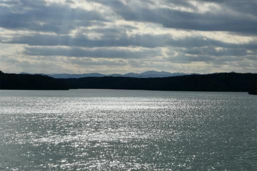 202300310・ニコン狭山湖1-24